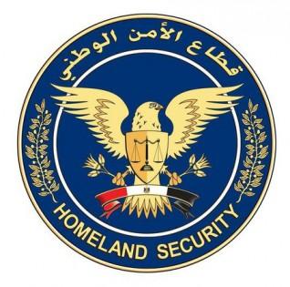 قطاع الأمن الوطني